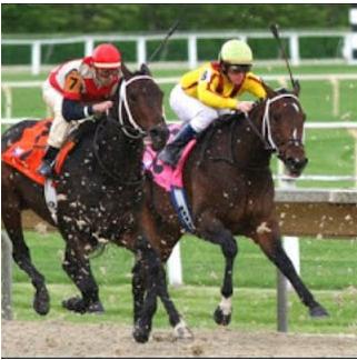 05 Haziran Kara Kamçı Belmont At Yarışı Tahminleri (GÜNCELLENDİ)
