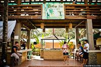 yellow fin, Baler, Itinerary, Surfing, Sabang Beach, Pacific Waves Inn, Travel, Aurora, Philippines