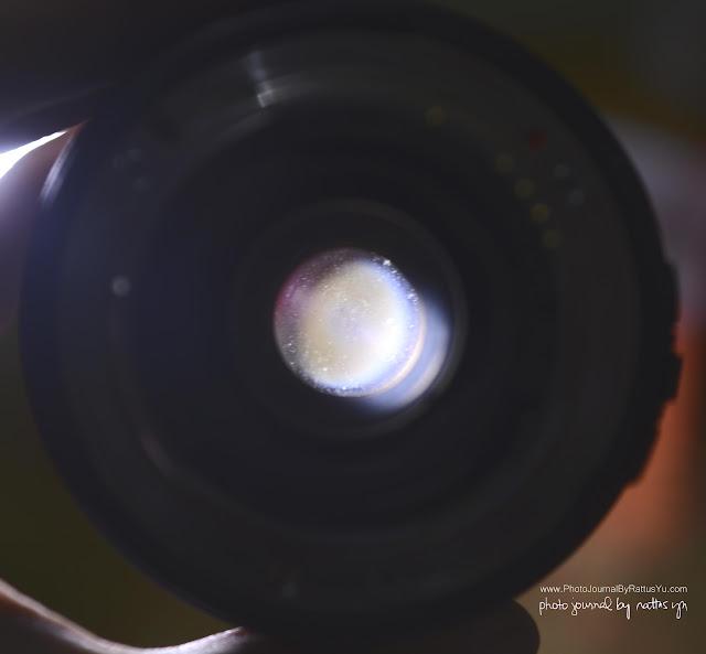 Nikon N60 Film SLR + Sigma 24-70mm f/3.5-5.6 D Bundled Package