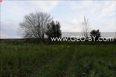 Налибокская пуща. У деревни Заборье. Мост через канал