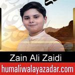 https://www.humaliwalayazadar.com/2020/03/zain-ali-zaidi-manqabat-2020.html