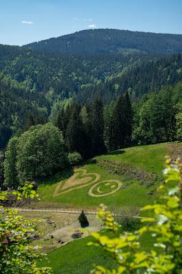 Premiumwanderweg Murgleiter | Etappe 3 von Forbach nach Schönmünzach | Wandern nördlicher Schwarzwald 24