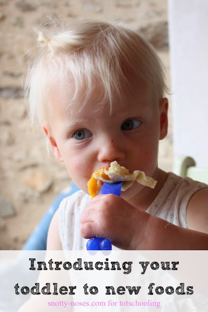 10 Tips to Help You Feed your Toddler a Healthy Diet