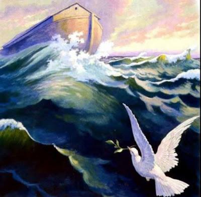 The Noah's Ark by Tammy Lang Jensen