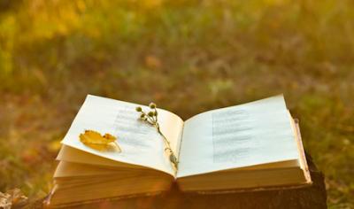 5 Contoh Puisi Sektet dalam Bahasa Indonesia