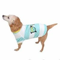Fun in the Sun - UV Dog T-Shirt - Light Blue - Sun Squad