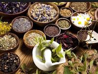 Fitofarmaka | tanaman obat | obat tradisional