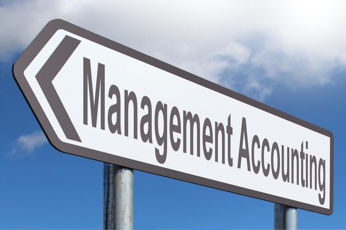 عناصر نظام المحاسبة الإدارية