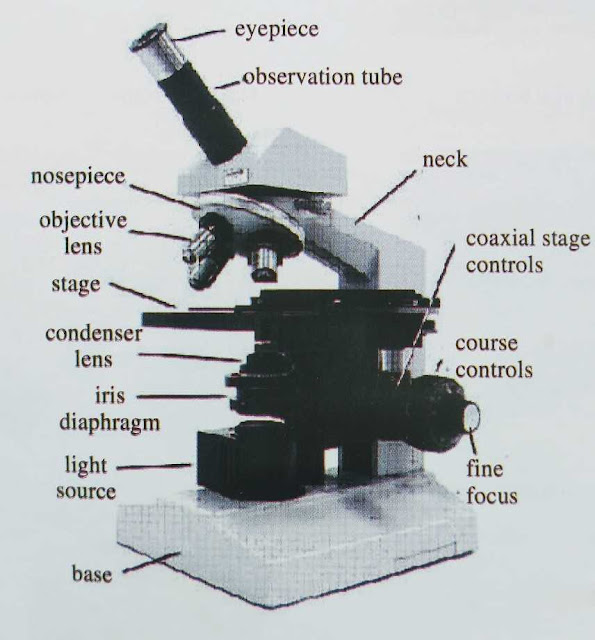 Microscope-instrument