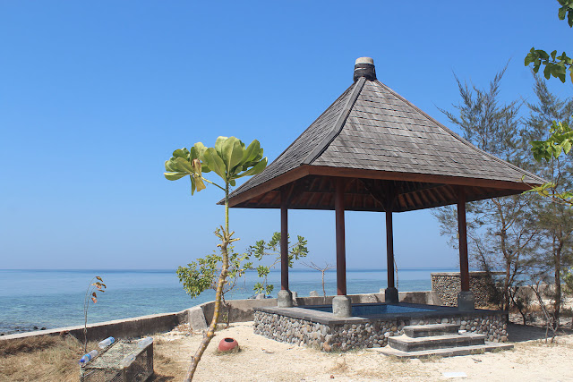 Menyapa Bintang Laut Biru di Pulau Samalona Makasar