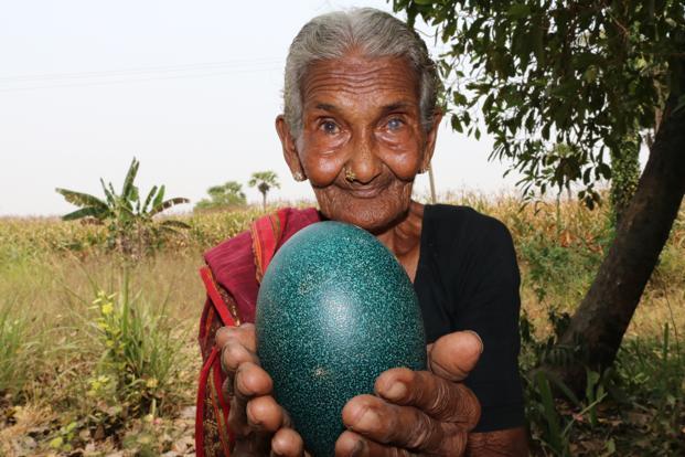 চলে গেলেন ১০৭ বছর বয়সী বিশ্বের সবথেকে প্রবীণ ইউটিউবার মাস্তানাম্মা