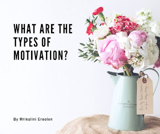 What Are The Types Of Motivation?
