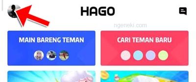 Profil HAGO