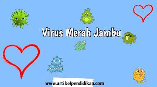 Virus merah jambu