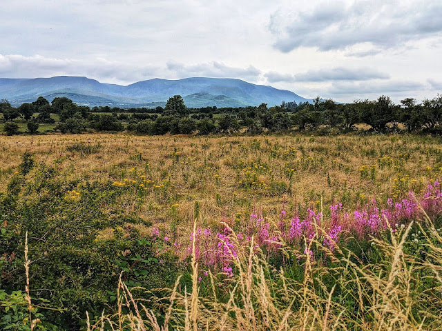 Views of the Comeragh Mountains along the Waterford Greenway in Ireland