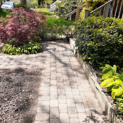 Toronto Riverdale Front Garden Spring Cleanup After by Paul Jung Gardening Services--a Toronto Organic Gardener