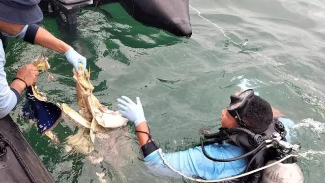 Pasukan TNI AL dan Nelayan Temukan Beberapa Potongan Tubuh di Pulau Lancang