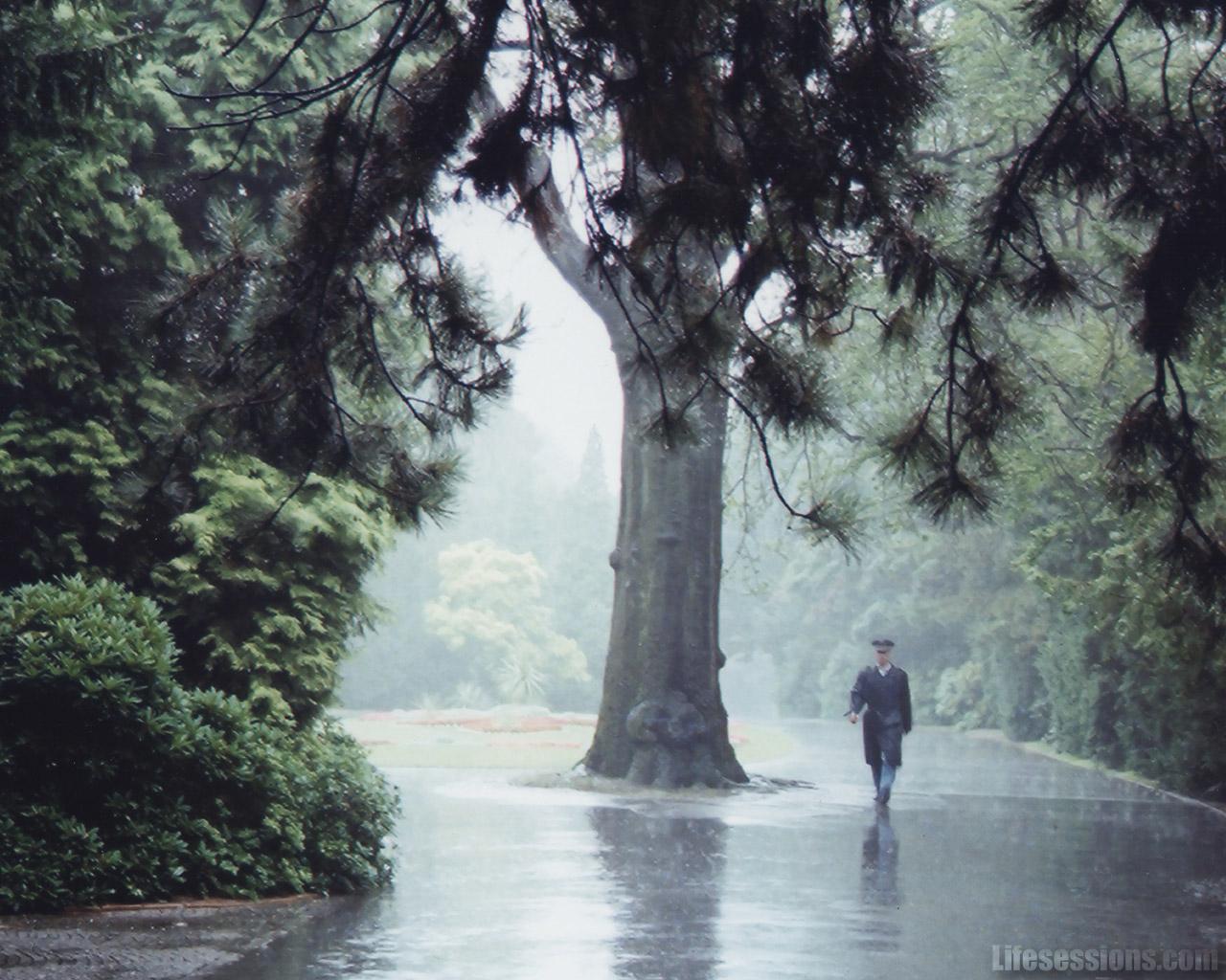 Beautiful Rain Pictures (45 Photos)