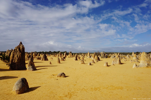 Lancelin nambung national park pinnacles australia perth wa