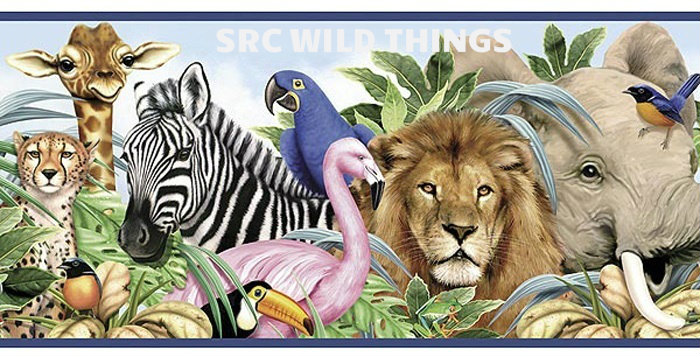 Wild Things Challenge starts May 16th