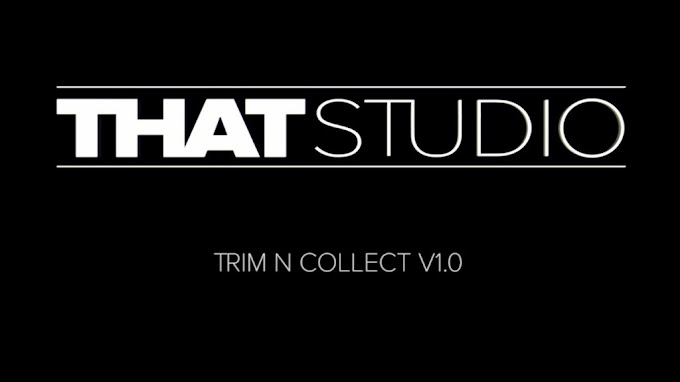 Trim N Collect v1.5[AEScripts][After Effects][Plugin][WIN][MAC]