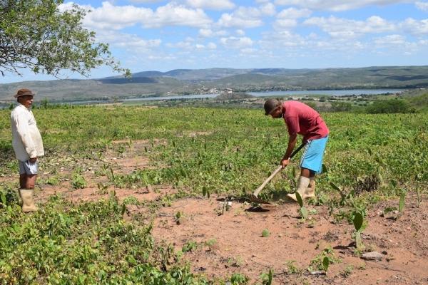 Em Belo Monte/AL, Iteral garante registro de lotes em assentamento