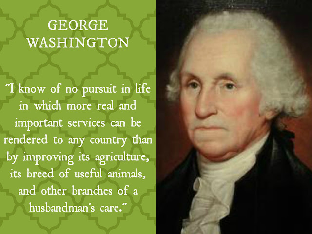 Washington Quote