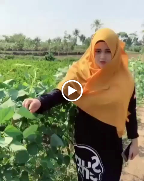 Beautiful Village Girl with a Hijab