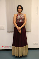 Actress Regina Candra Latest Stills in Maroon Long Dress at Saravanan Irukka Bayamaen Movie Success Meet .COM 0010.jpg