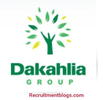 Junior accountant At Dakahlia group