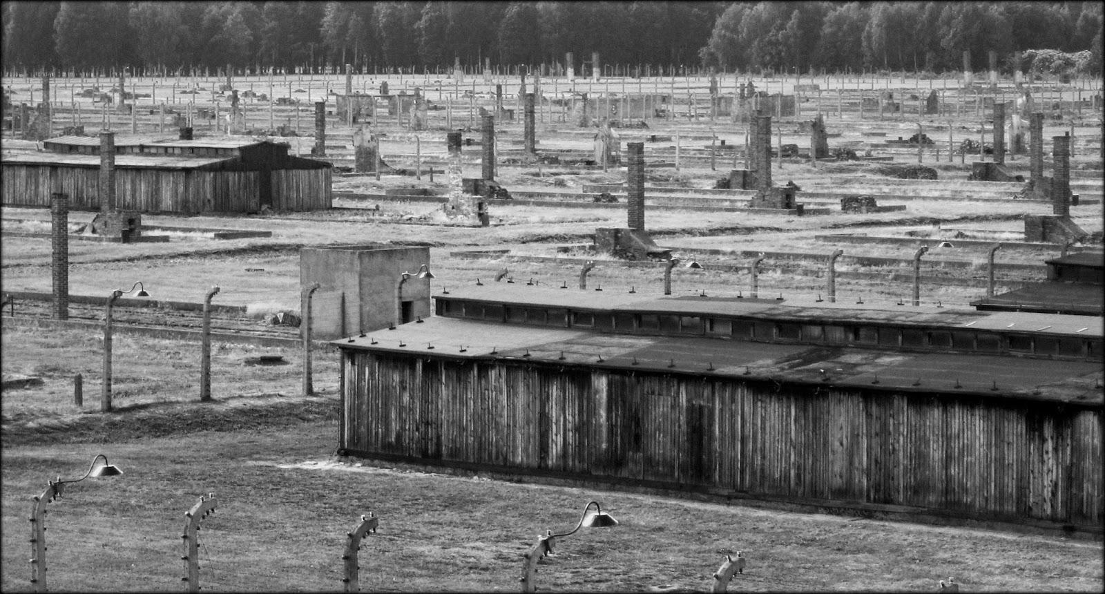 A research on birkenau auschwitz