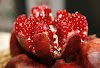 What is special about pomegranates?
