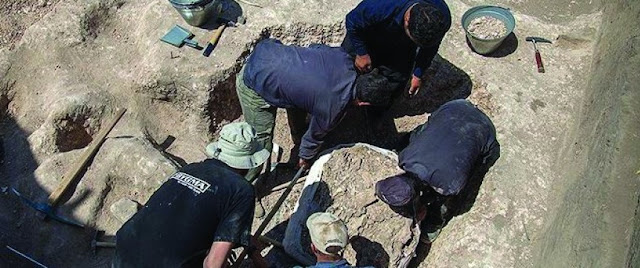 Six Neolithic sites discovered in western Iran