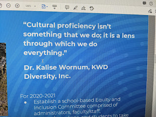 screen grab with good quote from recent SchComm meeting