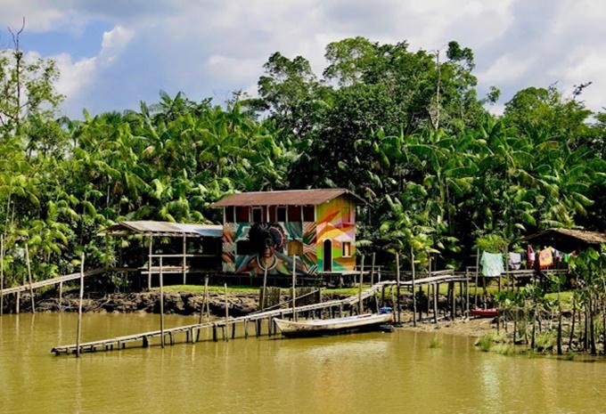 Ilha do Combu Belém Pará