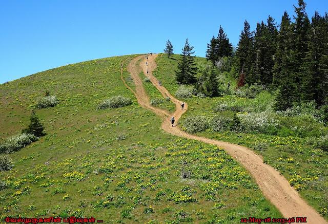 Bald Butte Trail Oregon