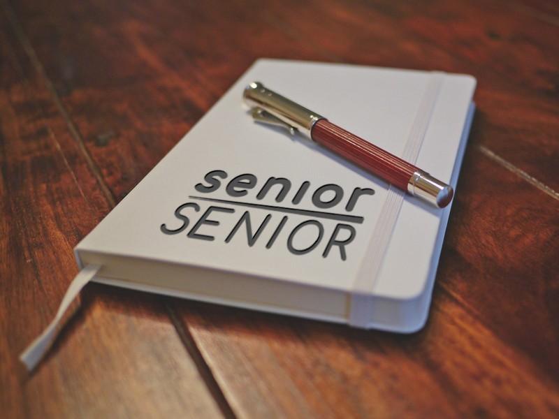 SeniorSenior Mock Book