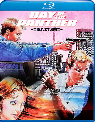 Day of the Panther 1988 Dual Audio BRRip 480p 300Mb x264
