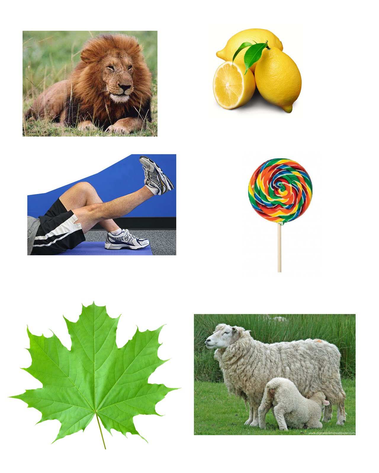 Resource: Pictures Of Objects Start With Letters A To Z