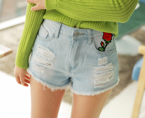 Floral Embroidered Damaged Denim Shorts