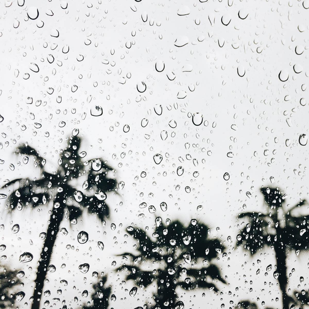 Rain Drops Diffuser Blend Recipe