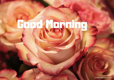 good morning images all