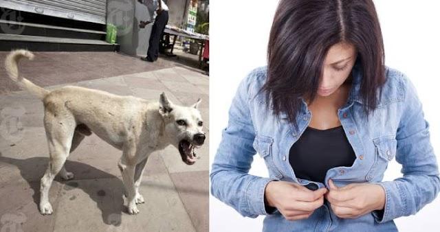 घर से निकलते वक़्त कुत्ते का भोंकना या कपड़े के बटन का गलत लगना देता हैं ये संकेत