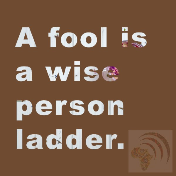 A fool is a wise person ladder. African proverb