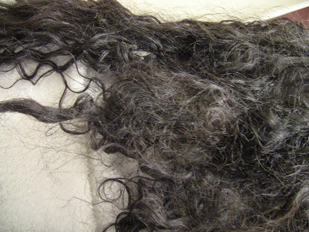 tangled hair techs 2015