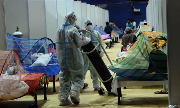 أول دولة عربية تسجل حالة وفاة يشتبه بإصابتها بالفطر الأسود