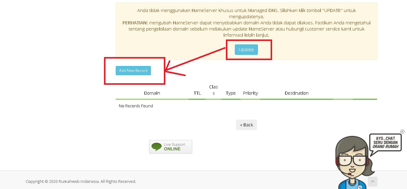 setting dns custom domain
