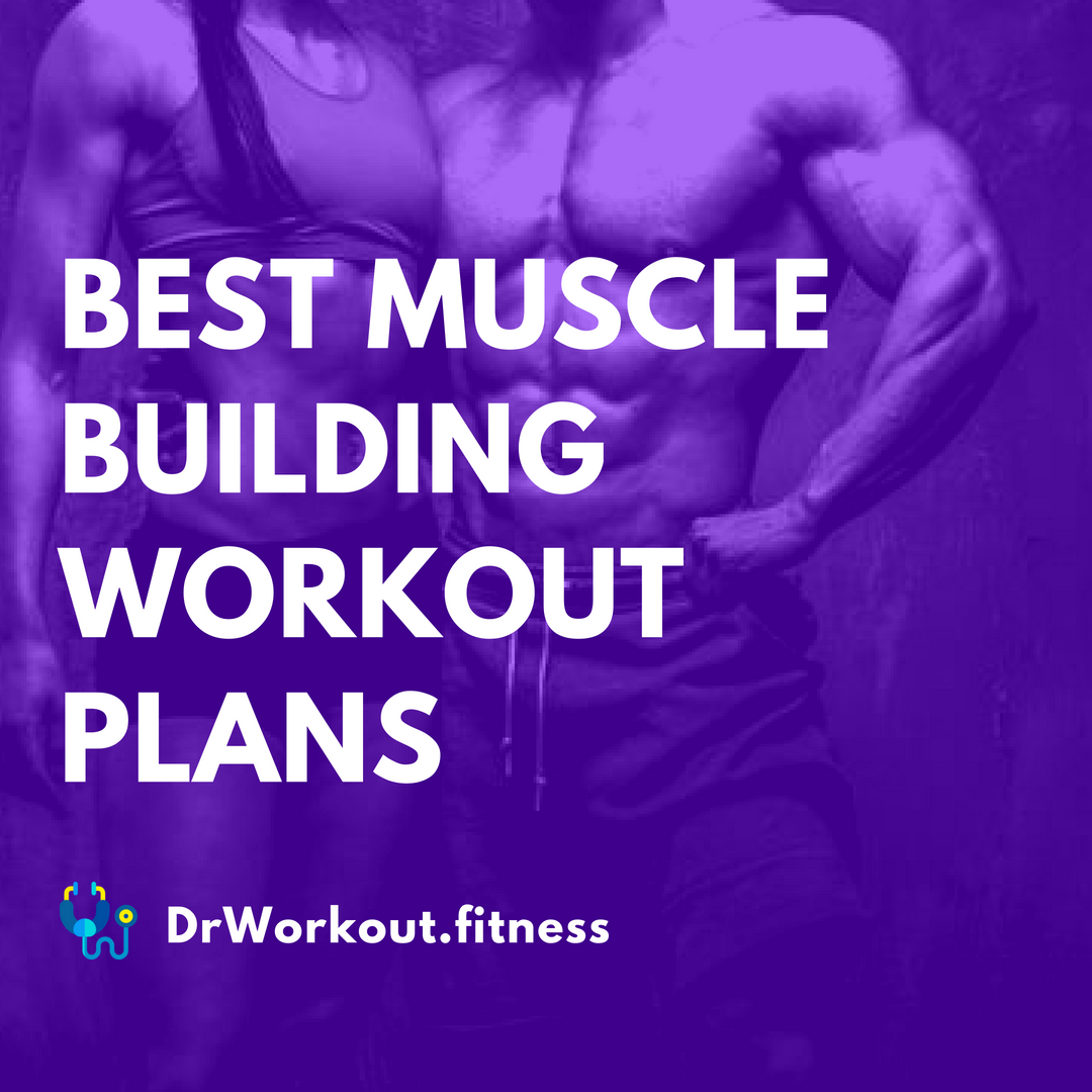 Best Workout Routines for Mass