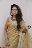 Sony Charistha in Lovely Brown Saree and Choli Spicy Pics ~  Exclusive 11.JPG