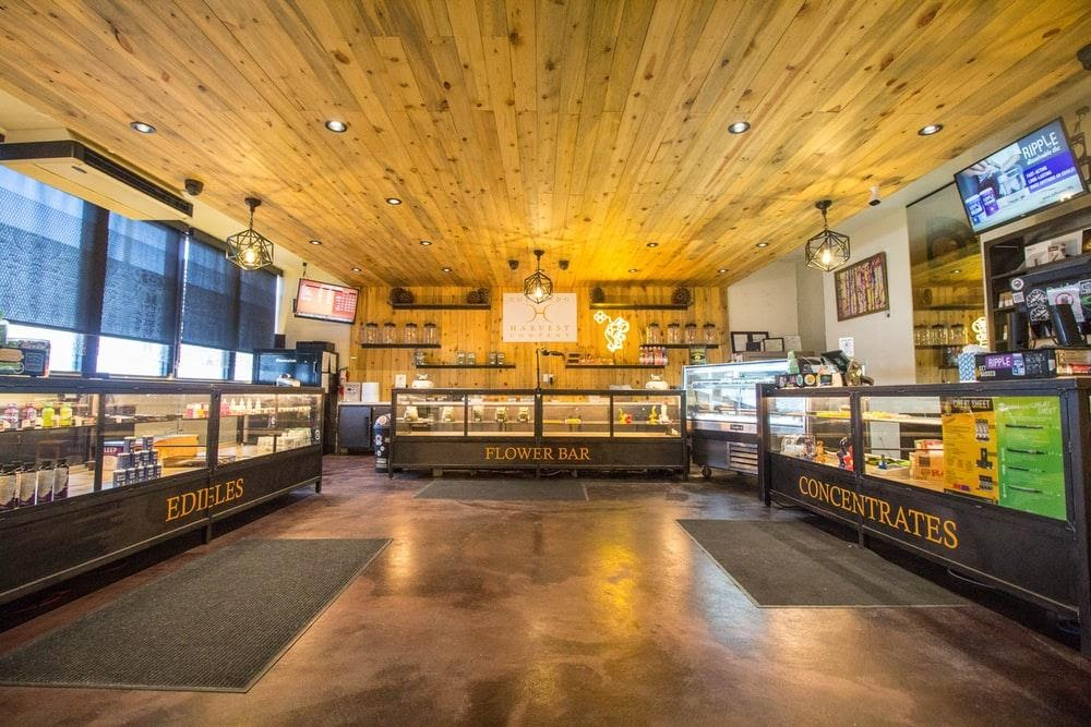 Plan to open a CBD shop